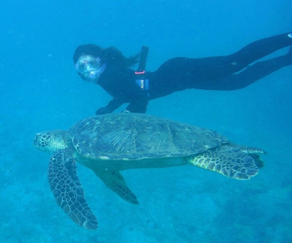Lydia from L.A. freediving with the turtles